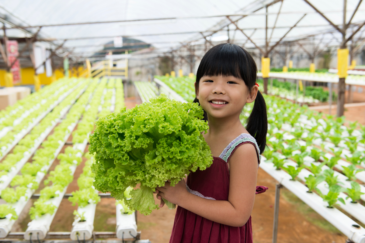 From soil-based farms inside abandoned factories to hydroponic vegetable farms in cities throughout Asia Pacific, city-based agriculture reduces the need to transport produce – and the carbon outputs that go with it. (Image © Kenishirotie / iStock)